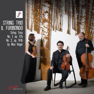 Reger: String Trios, Op. 77b & Op. 141b