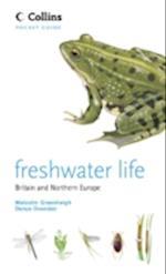 Freshwater Life (Collins Pocket Guide)