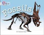 Fossils af Andrew Ross
