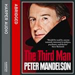 Third Man: Life at the Heart of New Labour