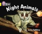 Night Animals (Collins Big Cat)