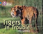 Tigers in Trouble (Collins Big Cat Progress)