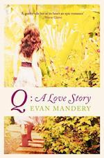 Q: A Love Story af Evan Mandery