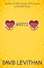 Boy Meets Boy af David Levithan
