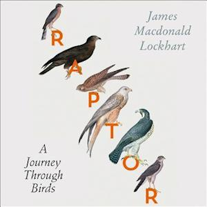 Raptor af James Macdonald Lockhart