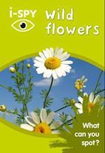 i-Spy Wild Flowers (Collins Michelin i SPY Guides)