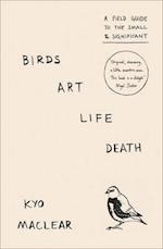 Birds Art Life Death