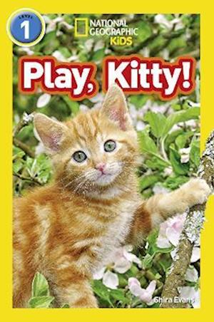 Play, Kitty!