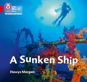 A Sunken Ship