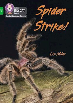 Spider Strike!