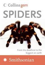 Spiders (Collins Gem)
