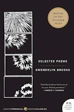 Selected Poems (Harper Perennial Modern Classics)