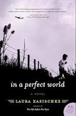 In a Perfect World af Laura Kasischke