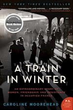 Train in Winter (Resistance Trilogy)