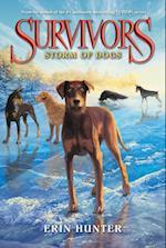 Storm of Dogs (Survivors)