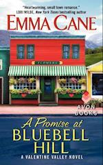 A Promise at Bluebell Hill (Valentine Valley)