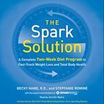 Spark Solution