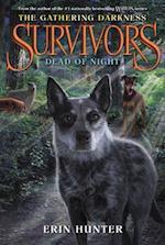 Dead of Night (Survivors)