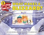 What Makes a Blizzard? (Let'S-Read-And-Find-Out Science, 2)