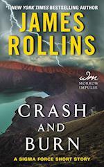 Crash and Burn af James Rollins