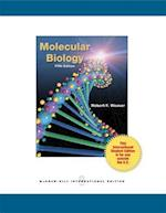 Molecular Biology (Int'l Ed) (College Ie Overruns)