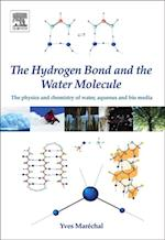 Hydrogen Bond and the Water Molecule