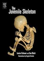 Juvenile Skeleton
