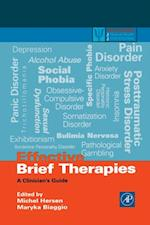 Effective Brief Therapies (Practical Resources for the Mental Health Professional)