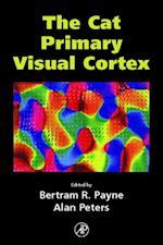 Cat Primary Visual Cortex