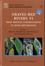 Gravel Bed Rivers 6 (Developments in Earth Surface Processes)