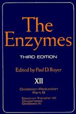 Enzymes (ENZYMES)