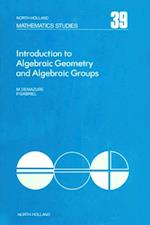 Introduction to Algebraic Geometry and Algebraic Groups af Gabriel Demazure, Peter Michel