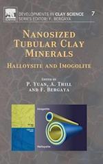 Nanosized Tubular Clay Minerals (Developments in Clay Science, nr. 7)