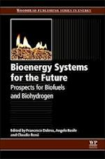 Bioenergy Systems for the Future (Woodhead Publishing Series in Energy)
