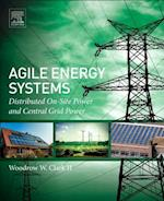 Agile Energy Systems