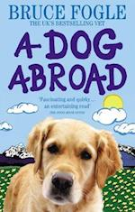 A Dog Abroad