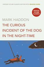 The Curious Incident of the Dog in the Night-time (Vintage Future Classics S)
