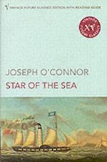 The Star of the Sea (Vintage Future Classics S)