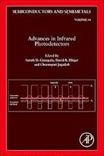 Advances in Infrared Photodetectors af Professor Chennupati Jagadish