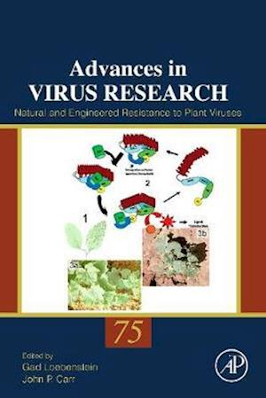 Natural and Engineered Resistance to Plant Viruses