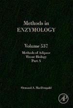 Methods of Adipose Tissue Biology Part A (Methods in Enzymology, nr. 537)