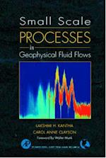 Small Scale Processes in Geophysical Fluid Flows (International Geophysics, nr. 67)