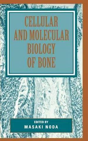 Cellular and Molecular Biology of Bone