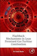 Flashback Mechanisms in Lean Premixed Gas Turbine Combustion