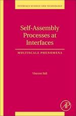 Self-Assembly Processes at Interfaces (Interface Science and Technology)