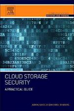 Cloud Storage Security (Computer Science Reviews and Trends)