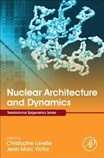Nuclear Architecture and Dynamics (Translational Epigenetics)