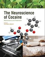 Neuroscience of Cocaine