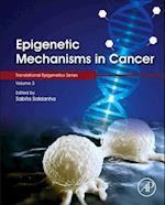 Epigenetic Mechanisms in Cancer (Translational Epigenetics)
