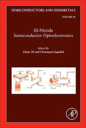 Bog, hardback III-Nitride Semiconductor Optoelectronics af Professor Chennupati Jagadish
